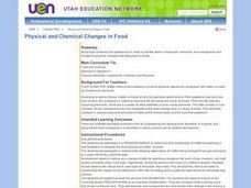 Physical and Chemical Changes in Food Lesson Plan