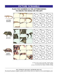 Picture Scramble Worksheet
