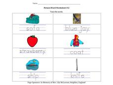 Picture/Word Worksheet #12 Worksheet