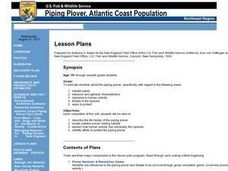 Piping Plover Atlantic Coast Population Lesson Plan
