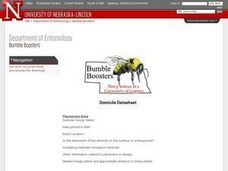 Placing Artificial Domiciles to Attract Bumble Bees Lesson Plan