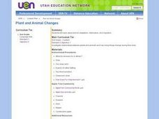 Plant and Animal Changes Lesson Plan