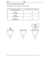 Plant Data Sheet Worksheet