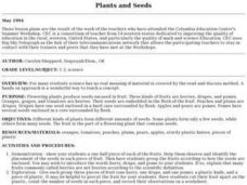 Plants and Seeds Lesson Plan