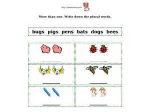 Plural Words Activity Worksheet