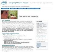 Pond Water and Pollywogs Lesson Plan