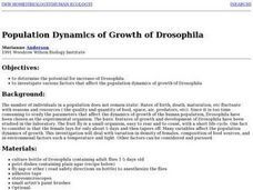 Population Dynamics of Growth of Drosophila Lesson Plan