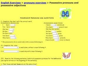 Possessive Pronouns and Possessive Adjectives Worksheet