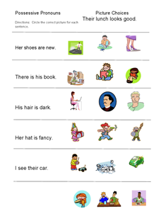 Possessive Pronouns: Picture Choices Worksheet