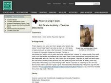 Prairie Dog Town Lesson Plan