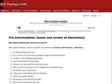 Pre-Intermediate: Lesson One Review of Elementary Worksheet