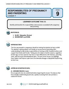 Pregnancy and Parenting Lesson Plan