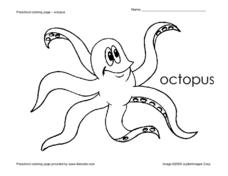 octopus coloring pages and activities - photo#28