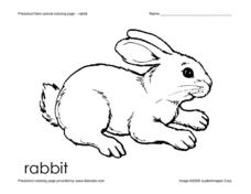 Preschool Farm Animal Coloring Page - Rabbit Worksheet