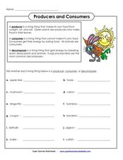 Producers and Consumers Worksheet