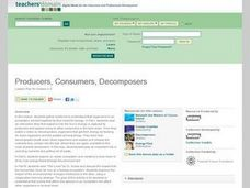 Producers, Consumers, Decomposers (3-5) Lesson Plan