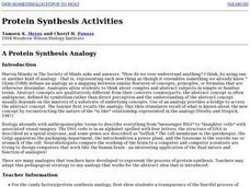 Protein Synthesis Activities Lesson Plan