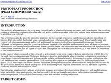 Protoplast Production (Plant Cells Without Walls) Lesson Plan