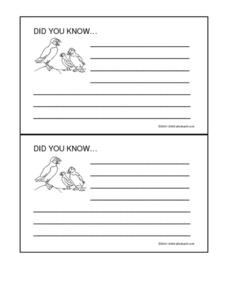 "Puffins ""Did You Know..."" Cards Worksheet"