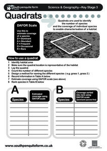 Quadrants Worksheet