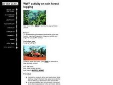 Rain Forest Logging Lesson Plan