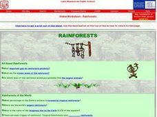 Rainforest- Online Worksheet Worksheet