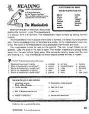 Reading And Grammar-- the Meadowlark Lesson Plan