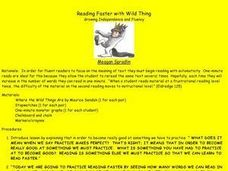 Reading Faster with Wild Thing Lesson Plan