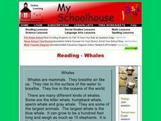 Reading- Whales (Online Interactive) Worksheet