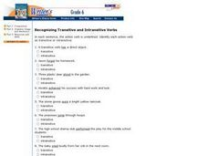 Recognizing Transitive and Intransitive Verbs Worksheet