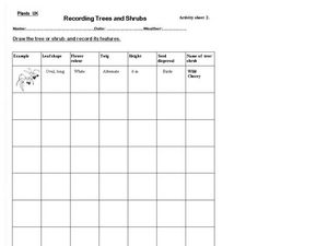 Recording Trees and Shrubs Worksheet