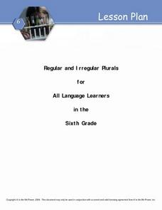Regular And Irregular Plurals Lesson Plan