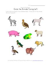 Relational Worksheets: Circle the Animals Facing Left Worksheet