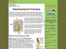 Repairing Spinal Cord Injury Lesson Plan