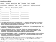 Reptile Matching Worksheet