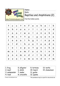 Reptiles and Amphibians (2) Worksheet