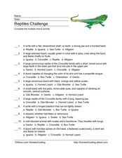 Reptiles Vocabulary Multiple Choice Activity Worksheet