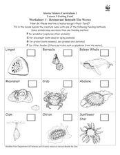 Restaurant Beneath the Waves Worksheet