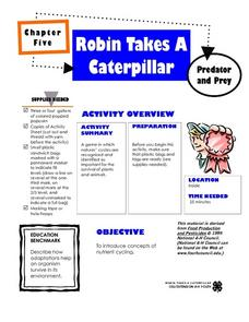 Robin Takes a Caterpillar Lesson Plan
