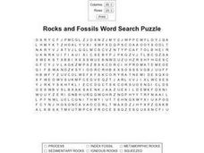 Rocks and Fossils Word Search Puzzle Worksheet