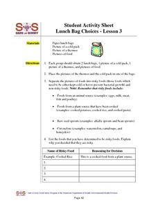 Safe Or Sorry-- Risky And Non- Risky Lunch Box Choices Worksheet