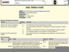 Salt: White Gold Lesson Plan
