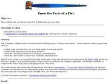 Science: Identifying Fish Parts Lesson Plan