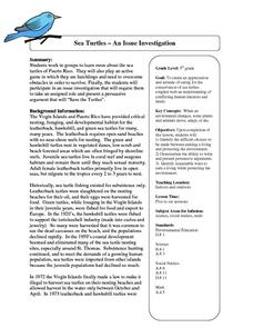 Sea Turtles:  An Issue Investigation Lesson Plan
