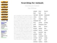 Searching for Animals Worksheet