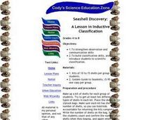 Seashell Discovery:  A Lesson in Inductive Classification Lesson Plan