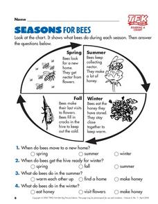 Seasons For Bees Lesson Plan