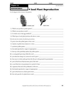 Plant Reproduction Worksheet