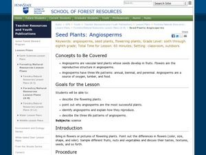 Seed Plants: Angiosperms Lesson Plan