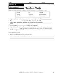 Seedless Plants Worksheet